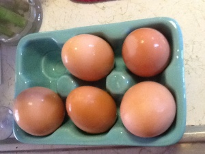 By the sink for drying washed eggs
