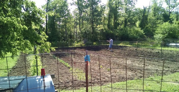 2015 garden first week of May