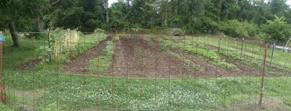 May 31 garden
